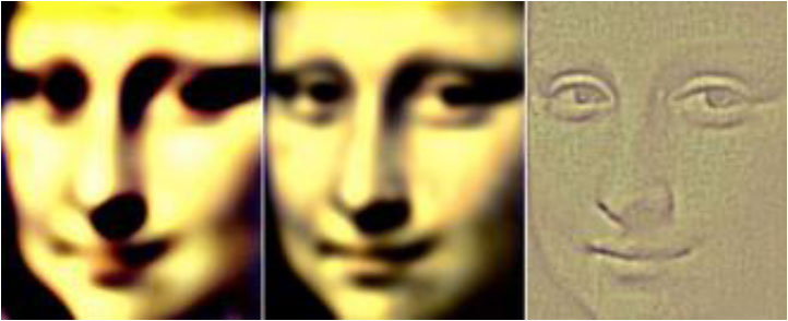 lisa Illusions: Whats in a face?