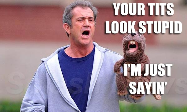 LOL MEL GIBSON TITS LOOK STUPID Stay Classy Mel Gibson