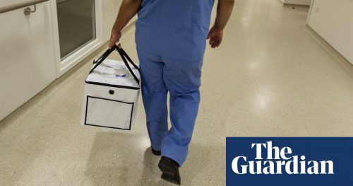 3680 500x263 China is harvesting organs from detainees, tribunal concludes