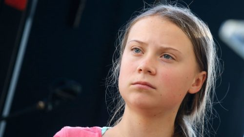 00 social greta 500x281 Attacks on Greta Thunberg Come from a Coordinated Network of Climate Change Deniers